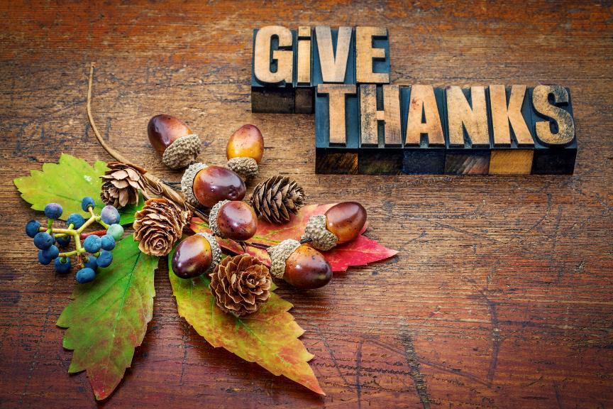 Gratitude Series – Wednesdays in November 2019