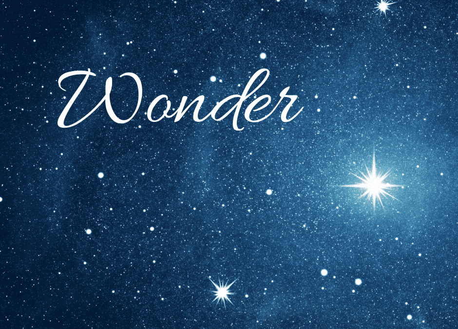 Advent Wonder