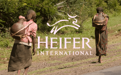 Women on Mission Project December 2020: Heifer International