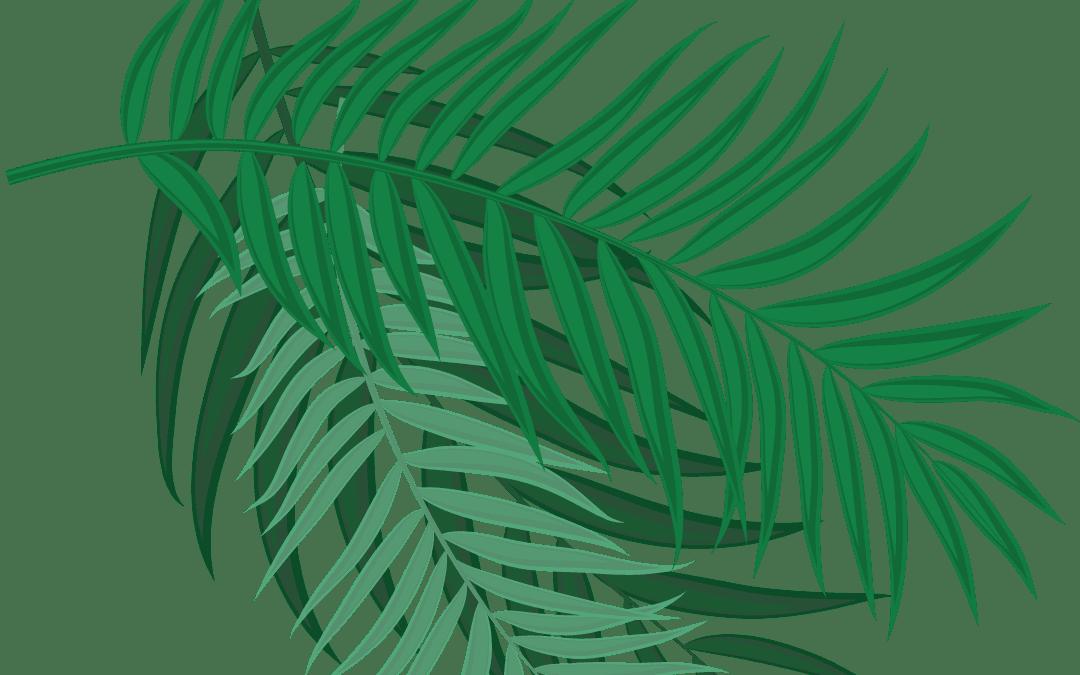 Palm Sunday, March 28, 2021